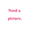 Need a Picture
